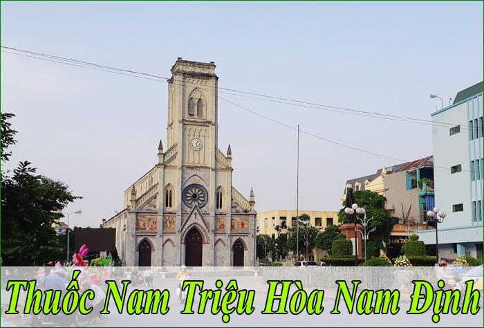 Thuốc Nam Triệu Hòa Tại Nam Định Chính Hiệu